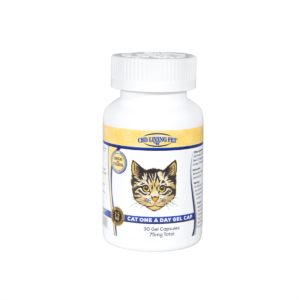 Cat-One-A-Day-Gel-Cap-Front